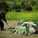 Maguindanao massacre complainants should expose bribery attempts – Palace