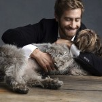 Dogs sexier than smartphones?