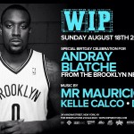 House committee approves Nets big man Blatche's naturalization
