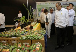 President Benigno S. Aquino III tours the exhibit area upon arrival for the Philippine Business for Social Progress (PBSP) Membership Meeting and Launch of Mindanao Inclusive Agribusiness Program (MIAP) at the Function Hall 3, SMX Convention Center of the SM Lanang Premier in Lanang, Davao City on Monday (September 08, 2014). The event aims to rally PBSP members and other Mindanao companies around the idea of inclusive business, specifically to support PBSP's MIAP on priority industries: coffee, cacao, corn, palm oil and rubber. Moreover, it seeks to present opportunities for the business sector regarding possible IB investments in Bangsamoro. (MNS photo)