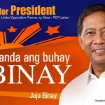 Trillanes to Binay: Back out of 2016 polls as well