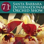 'Wild World of Orchids' arrives March 4-6, 2016