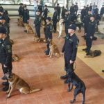PNP gets 45 bomb sniffing dogs